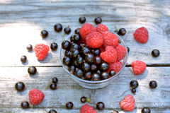 Homegrown, ripe blackcurrant and big raspberry in glass plate in the center of berry background. Homegrown, ripe, fresh blackcurrant and big raspberry in glass Royalty Free Stock Image