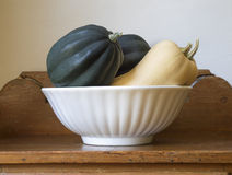 Homegrown Squash in a White Bowl Stock Photo