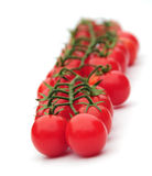 homegrown tomater royaltyfri foto