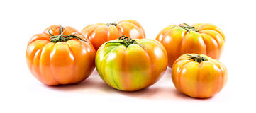 Homegrown tomatoes composition (Solanum lycopersicum). Solanum lycopersicum - a composition of different types and colors of home produced tomatoes on a white Stock Photography