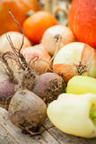 Homegrown vegetables Royalty Free Stock Photography