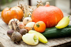 Homegrown vegetables Royalty Free Stock Photos