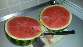 Homegrown Watermelon Royalty Free Stock Photo