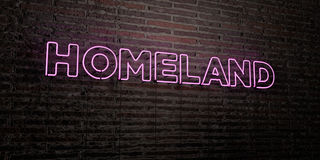 HOMELAND -Realistic Neon Sign on Brick Wall background - 3D rendered royalty free stock image. Can be used for online banner ads and direct mailers Stock Photography