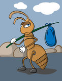 Homeless Ant. Illustration of sad homeless ant. Vector illustration Royalty Free Stock Image