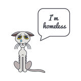 Homeless cat with speech bubble and saying Royalty Free Stock Images