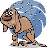 Homeless dog cartoon illustration. Cartoon Illustration of Poor Homeless Dog in the Rain Stock Images