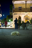 Homeless dog. A homeless dog sleeping in the middle of square in Afytos, Greece Royalty Free Stock Images