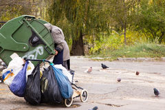 Homeless in a garbage can. Hungry homeless climbed into trash can Royalty Free Stock Images