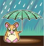 Homeless Hamster cartoon Stock Image