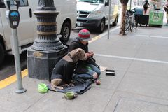 An homeless and her dog. An homeless woman and her dog sit down in a street of San Francisco Stock Image