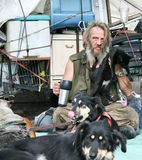 Homeless man with cat and dogs Stock Images