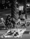 Homeless man and a dog in Miami south beach. Home less man and his dog making a living stock photos