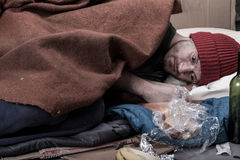 Homeless man lies on cardboard Royalty Free Stock Photography