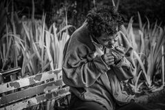 Homeless man smoking in streets, Brazil Stock Images
