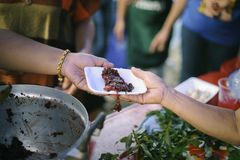 Homeless people are helped with food relief, famine relief : volunteers giving food to poor people in desperate need : The concept. Of food sharing Help solve stock image