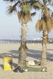 Homeless people sleeping at Venice Beach,. California Royalty Free Stock Image
