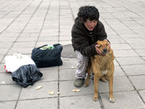 Homeless woman feeding ownerless dogs Royalty Free Stock Photo