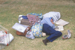 Homeless woman sleeping in a park, Los Angeles, California Stock Image