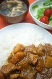 Homely Japanese curry Royalty Free Stock Photo