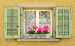 Homely Window. Colourful window with flowers and shutters Royalty Free Stock Image