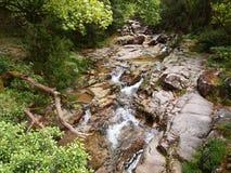 Homem河的谷, Peneda-Gerês国家公园在北葡萄牙 免版税库存照片
