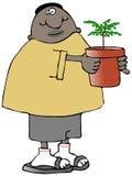 Homem étnico que guarda uma árvore pequena em um potenciômetro Fotografia de Stock Royalty Free