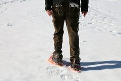 Homem adulto com os sapatos de neve no inverno Foto de Stock Royalty Free