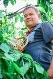 Homem adulto no jardim fotografia de stock royalty free