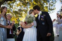 Homem afetuoso que beija a mulher no parque imagem de stock
