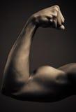 Homem afro-americano novo que dobra o bíceps Fotografia de Stock