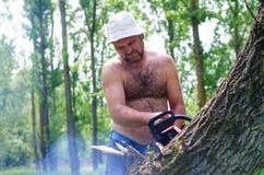 Homem apto que leva uma serra de cadeia na floresta Foto de Stock