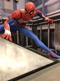 Homem-aranha Fotos de Stock Royalty Free