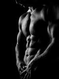 Homem atlético forte no fundo escuro Fotografia de Stock Royalty Free