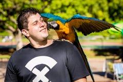 Homem brasileiro com sua arara do animal de estimação Foto de Stock Royalty Free
