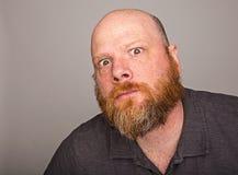 Homem calvo com a barba vermelha completa imagem de stock