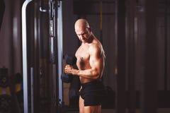 Homem calvo rasgado forte com os músculos enormes que bombeiam o ferro Ostenta o miliampère imagem de stock