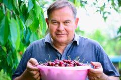 Homem com as cerejas no jardim foto de stock
