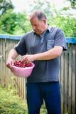 Homem com as cerejas no jardim foto de stock royalty free