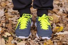 Homem com as sapatilhas que estão nas folhas de outono secas Foto de Stock