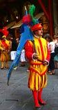 Homem com a bandeira no storico do calcio Foto de Stock Royalty Free