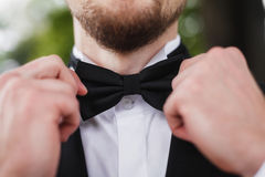 Homem com a barba que corrige seu bowtie Imagens de Stock Royalty Free