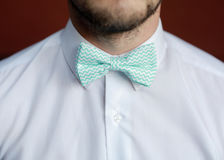 Homem com a barba que corrige seu bowtie Imagem de Stock Royalty Free