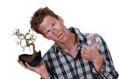 Homem com bonsais Foto de Stock Royalty Free