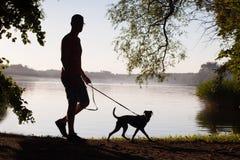 Homem com cão imagens de stock royalty free