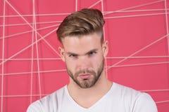 Homem com a cerda na cara concentrada restrita, fundo cor-de-rosa E masculinity fotos de stock royalty free