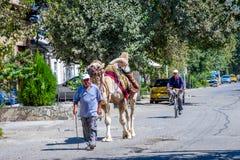 Homem com o camelo, Usbequistão Fotos de Stock Royalty Free