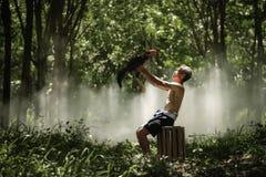 Homem com o galo de briga tailandês para traning Galo de briga de FitnessThai Fotos de Stock
