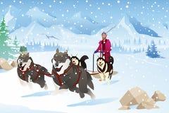 Homem com os cães que Sledding na neve durante o inverno Fotografia de Stock Royalty Free