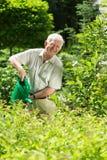 Homem com uma lata molhando Foto de Stock Royalty Free